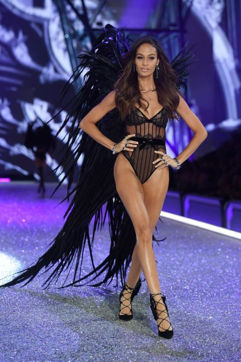 victoria-secrets-fashion-show-2016-19.jpeg